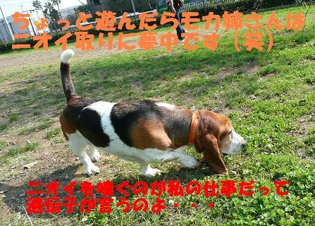 f0121712_15184652.jpg