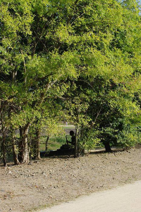 鴨川で木陰のおねぇさんを..._f0152550_21142377.jpg