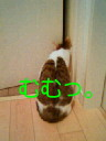 c0052756_17112833.jpg