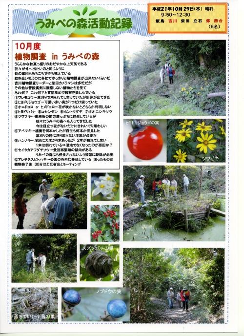 うみべの森「10月度植物調査」_c0108460_15562481.jpg