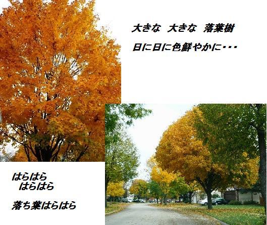 d0134785_1335814.jpg