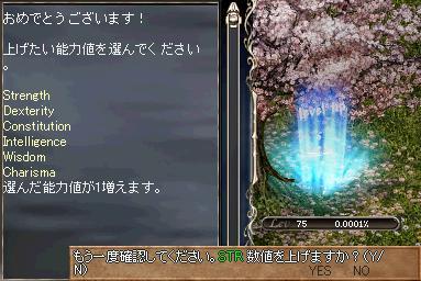 b0075192_1485559.jpg