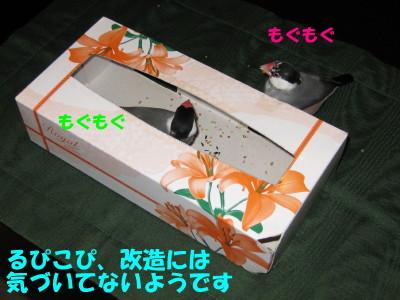 b0158061_20273867.jpg