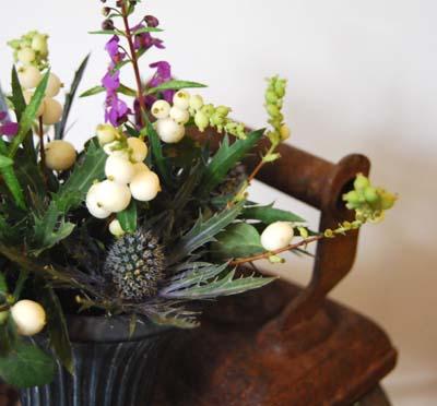 錆と植物_f0155891_18465132.jpg