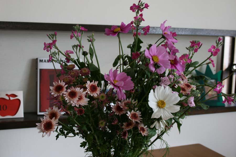 秋の花々きれい_c0223095_921784.jpg