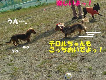 f0170713_1457259.jpg