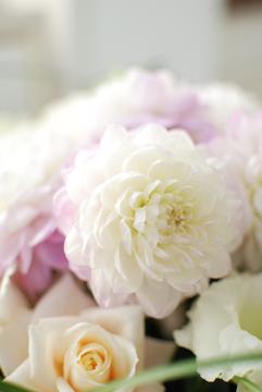 花の声_b0151059_12525291.jpg