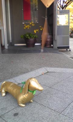 金箔ソフト犬_c0225067_1526133.jpg