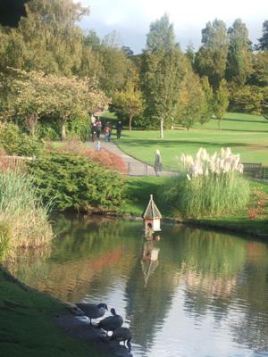 ロンドンの秋景色 Golders Hill Park _e0030586_7325964.jpg