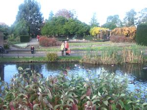 ロンドンの秋景色 Golders Hill Park _e0030586_7344088.jpg