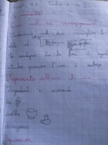 トスカーナの小学校で理科の実験は・・・_f0106597_22571989.jpg