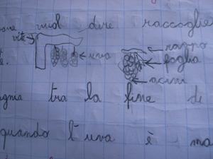 トスカーナの小学校で理科の実験は・・・_f0106597_22595084.jpg