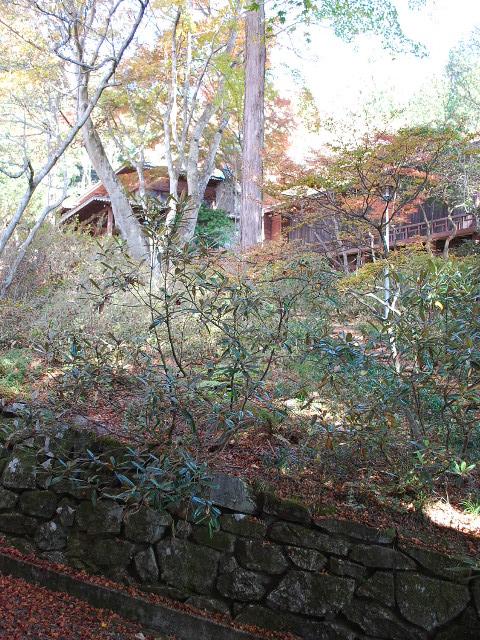 秩父宮殿下御登山記念館(関根要太郎設計作品)その2_f0142606_0244864.jpg