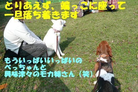 f0121712_8285432.jpg