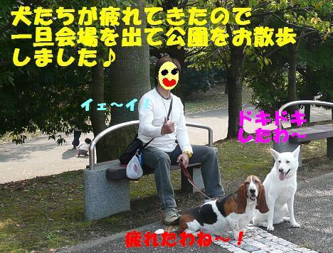 f0121712_934796.jpg