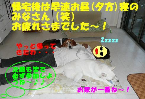 f0121712_97289.jpg