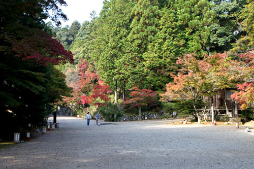 神護寺2_e0048413_2271573.jpg
