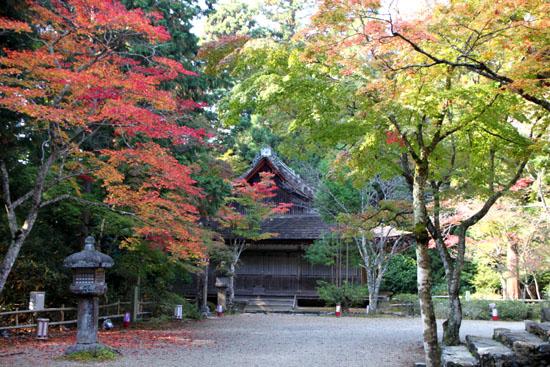 神護寺2_e0048413_227524.jpg