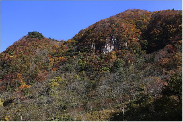 大きな秋、見つけに_c0042324_21252265.jpg
