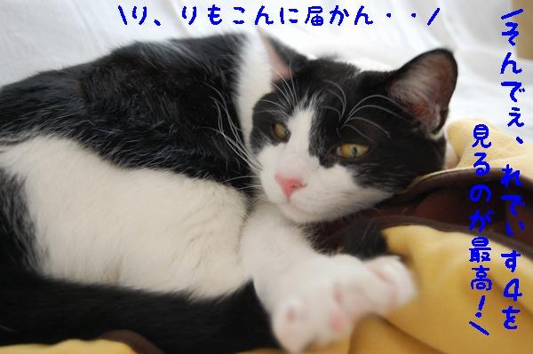 c0181639_0275241.jpg