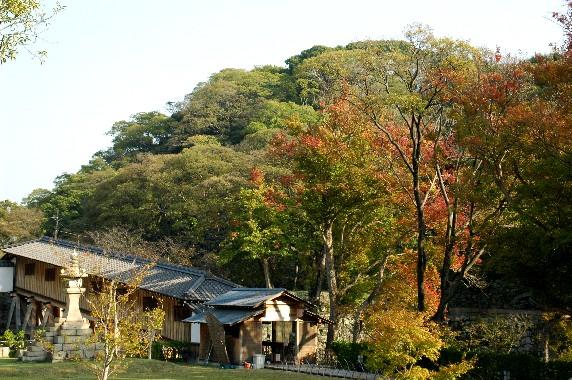 和歌山城_b0093754_23515260.jpg