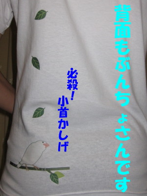 b0158061_22152784.jpg