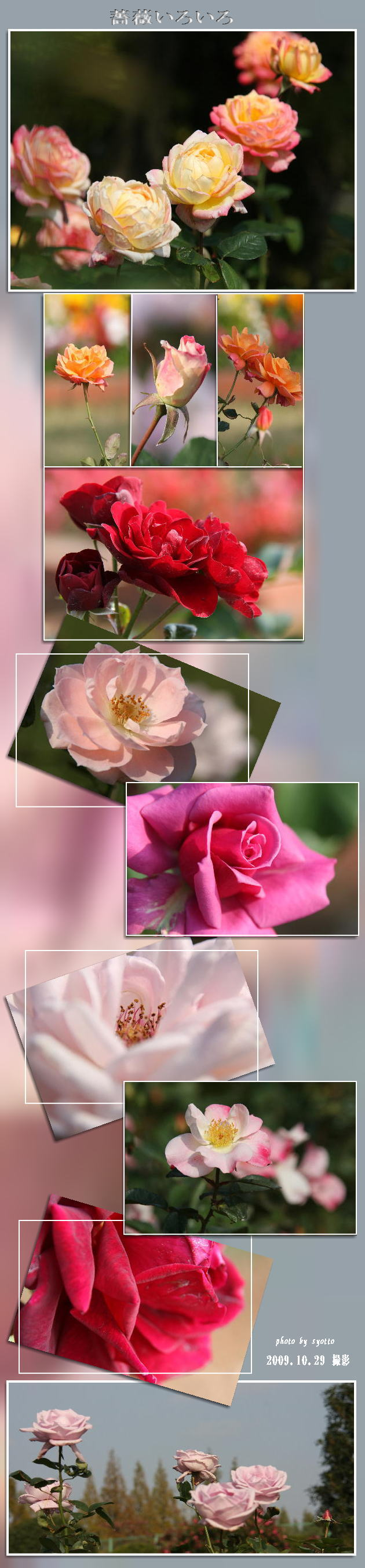 f0164592_0182832.jpg