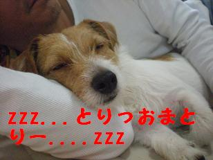 c0188294_20112996.jpg