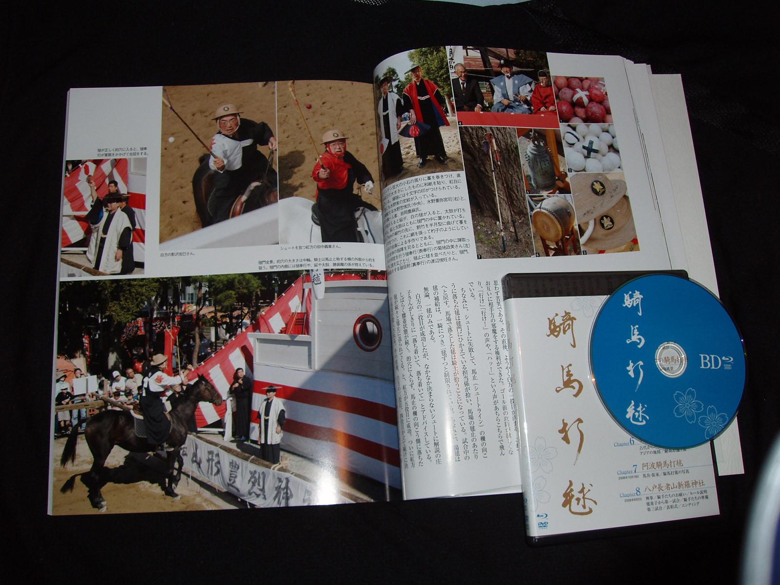 山形豊烈神社の騎馬打毬_e0144936_4123773.jpg
