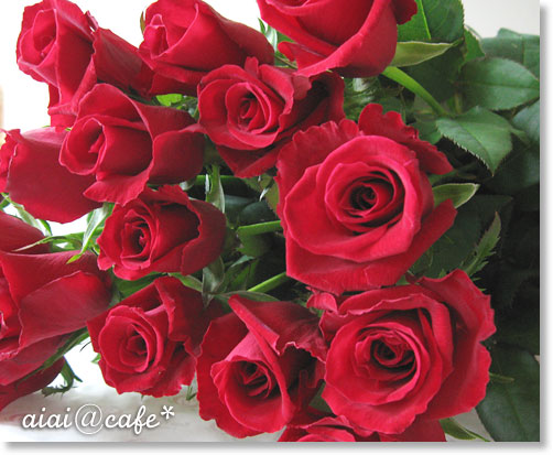 薔薇がキター!!_a0056451_12545841.jpg