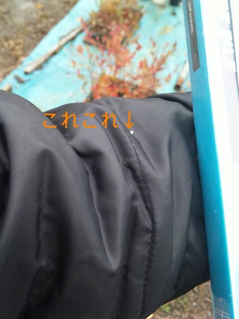 f0161572_10471563.jpg