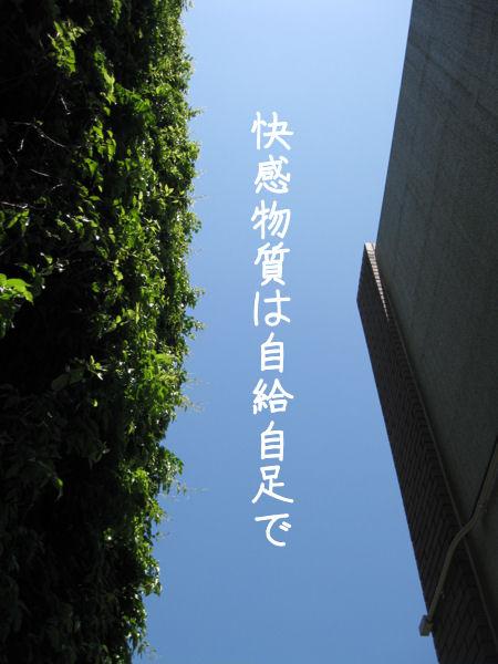 c0007384_849490.jpg