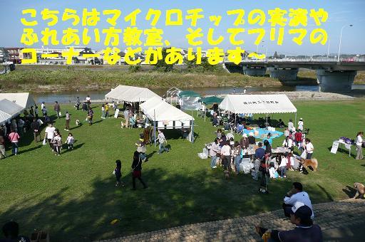 f0121712_2218284.jpg