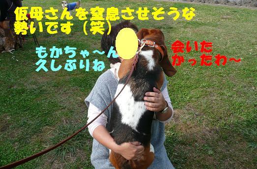 f0121712_2238508.jpg