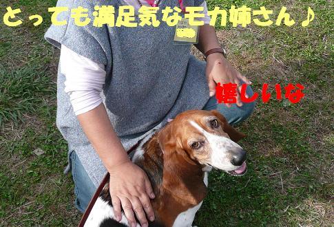 f0121712_2239032.jpg
