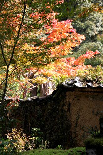 西明寺の紅葉 2_e0048413_219816.jpg