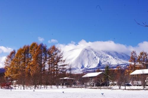11/3 初雪のスウィートグラス_b0174425_12134424.jpg
