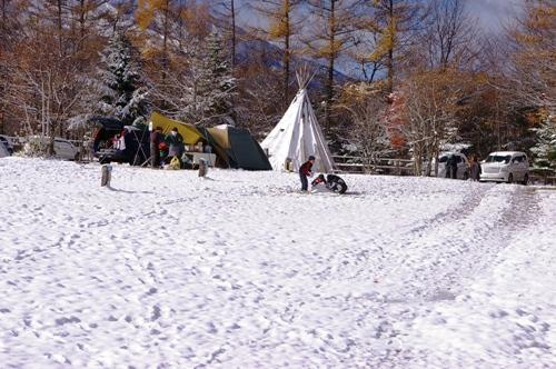 11/3 初雪のスウィートグラス_b0174425_1216557.jpg