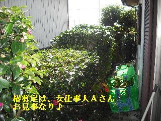 f0031037_17533997.jpg