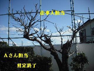 f0031037_17574742.jpg