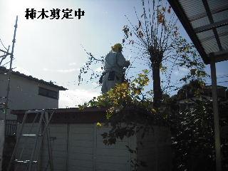 f0031037_180659.jpg