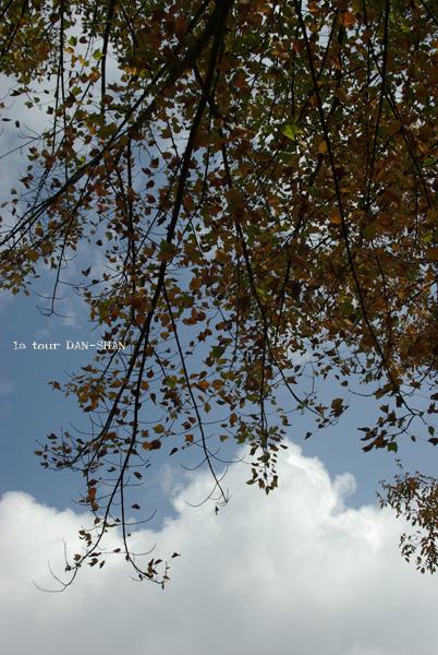 f0152637_9191148.jpg