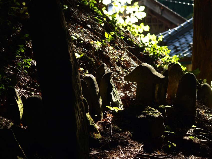 修那羅山の風景_d0149245_0105562.jpg