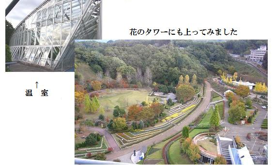 鬼岩公園~花フェスタ記念公園・・・_a0089450_22373057.jpg