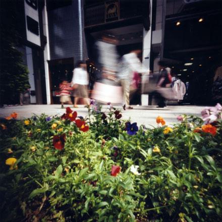 銀座通りの歩行者天国 Pinhole Photography_f0117059_18554356.jpg