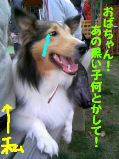 b0182763_23161910.jpg