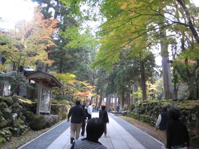 福井県の旅行_f0205367_2221583.jpg