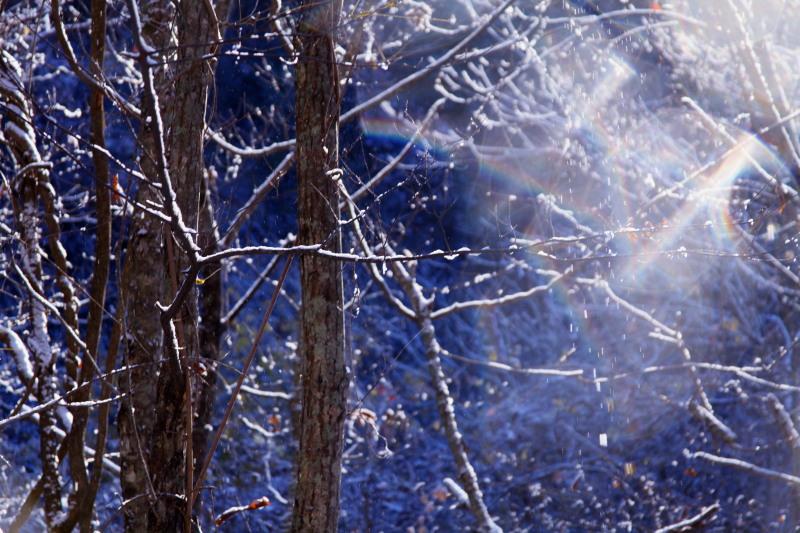 雪が降った日_f0075075_19273418.jpg