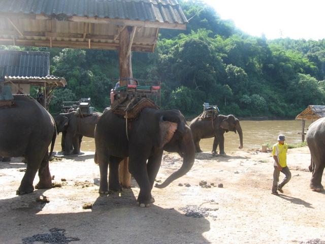 タイ旅行_d0102413_21535927.jpg