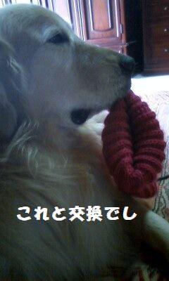 b0127531_8424756.jpg